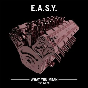 easy-what-you-mean_o6pvjr